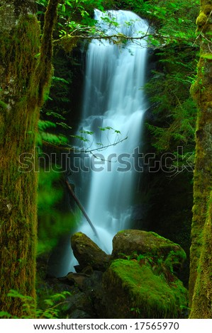 A magical set created by framing the waterfall slightly out-of-focus between the sharply focussed tree trunks.