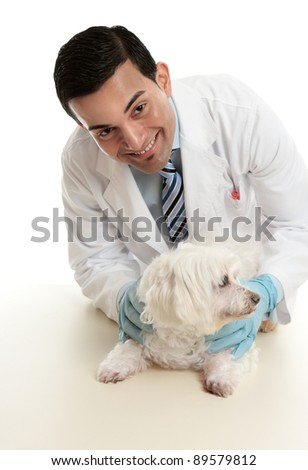 A male vet taking care of or attending to a small pet dog.   He is looking up with a friendly smile. - stock photo