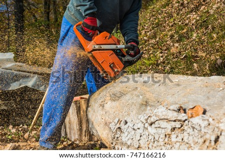 A man cutting a log with a chainsaw.