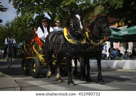 A man in a national costume as a carter  is driving a tourist in a horse-drawn carriage in Kutjevo, Croatia  11.6.2016.