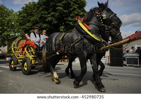 A man in a national costume as a carter is driving a tourist in a horse & Man National Costume Carter Driving Tourist Stock Photo (Royalty ...