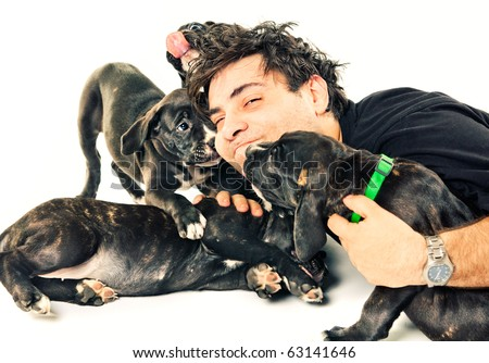 A man playing with puppies - stock photo