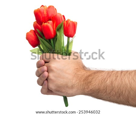 A Man's Hand Holding Bouquet Of Tulips On White Background - stock photo