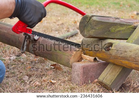 A man sawing a tree in the garden on a sunny day - stock photo