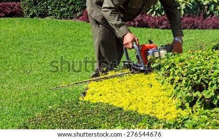 A man trimming shrub with Hedge Trimmer, Closeup - stock photo