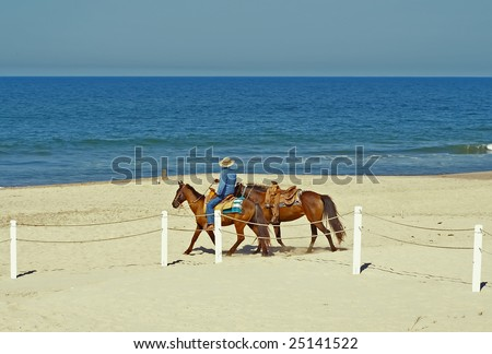 A man with two horses on the beach
