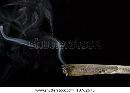 A marijuana cigarette - stock photo