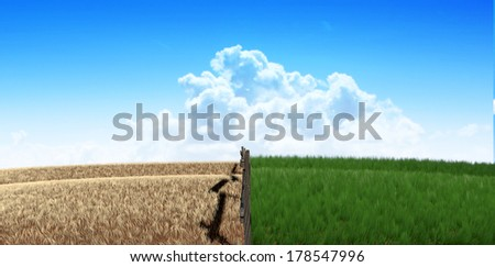 A meadow symmetrically cut split by a wooden fence with one side flourishing and the other withering symbolizing the saying greener pastures on a blue sky background - stock photo