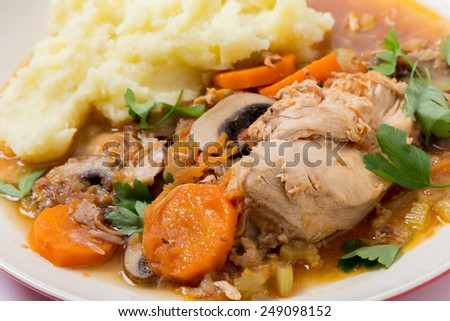A meal of chicken cacciatore, braised chicken cooked with tomato, celery, carrot, onion, mushrooms and stock and served with mashed potatoes, viewed close-up. - stock photo