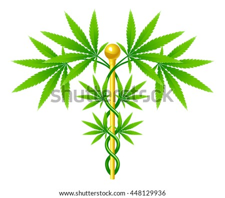 A medical marijuana plant caduceus concept symbol with cannabis plant with leaves intertwined around a rod  - stock photo