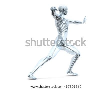 A medical visualisation of human anatomy. 3D rendered Illustration. Isolated on white. - stock photo
