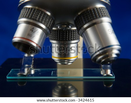 A microscope and slide