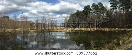 A Mississippi pond in early spring - stock photo