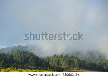 A mist day - stock photo