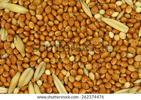 a mixture of grains abstract background