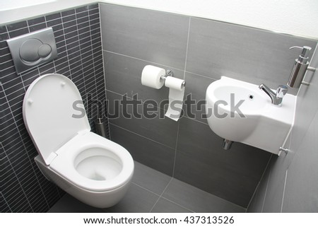 A modern toilet in different shades of grey