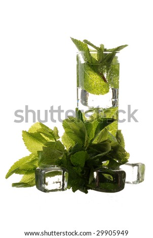 A mojito cocktail made with Tequila and mint leaves