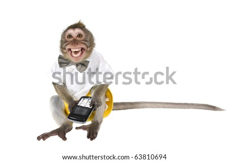A monkey with a cell phone, which cut off the key, showing his teeth - stock photo