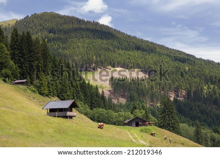 A mounain view with alpine cabines and cows - stock photo