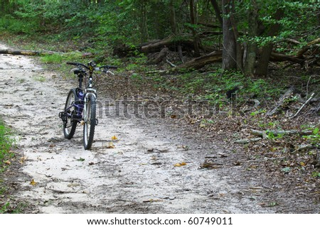 A mountain bike with a flashlight on the handle bars on a trail in the woods with room for your text