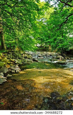 A mountain stream near to Ambleside on a summers day in the Lake District National Park Cumbria United Kingdom