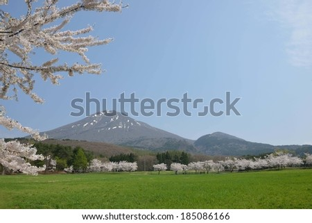 A mountain with snow on top and green pastures. - stock photo