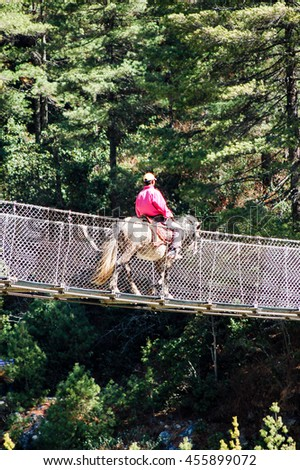 A muleteer wearing pink jacket and cap is crossing the rope bridge surrounded by the green pines during the everest trekking route.