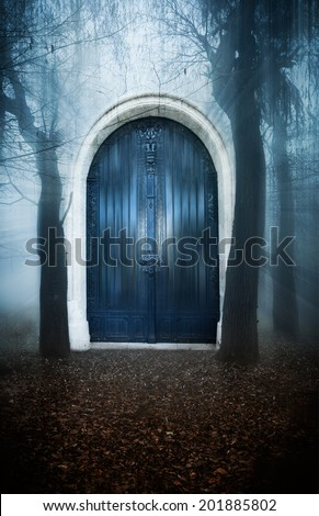 A mysterious portal-door in the forest - stock photo