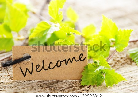 a natural looking label with welcome written on it and with green leaves and wood as background - stock photo