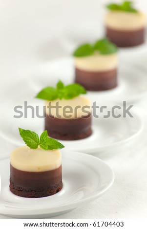 A no bake 3 Chocolates Cheesecakes with fresh mint buds and shallow depth of field on the dessert - stock photo