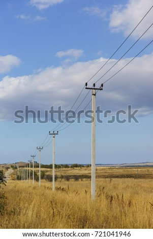 A number of electricity poles in the field in the fall. Vertical frame