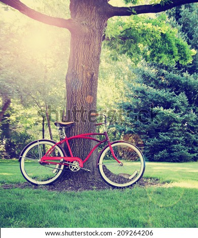 a old style bike leaning against a tree toned with a retro vintage instagram filter  - stock photo