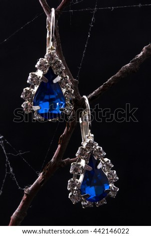 A pair of earrings with blue stones on the branch
