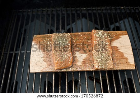 A pair of well seasoned wild raw Alaskan salmon fillets being grilled on a cedar plank of wood. - stock photo