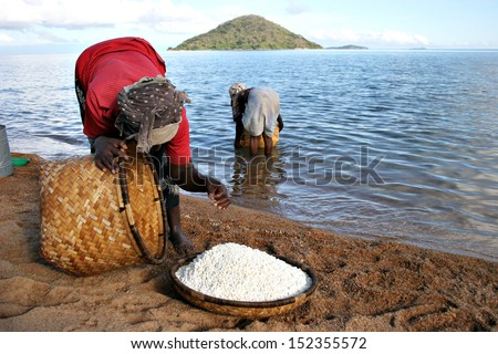 A pair of women harvest Lake Malawi. - stock photo