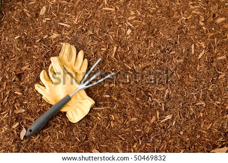 A pair of work gloves and a garden rake sit on a bed of bark mulch suitable for a background - stock photo