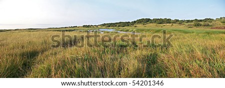 A panoramic view of a wetland in the iSimangaliso Wetland Park, South Africa - stock photo