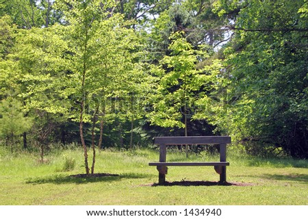A park bench with some tranquil trees in the background - stock photo