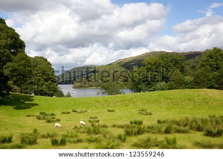 A pasture adjacent to Coniston Water in the English Lake District.