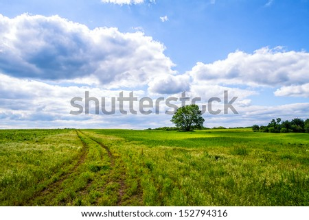A pathway road going through the fields with fluffy clouds - stock photo