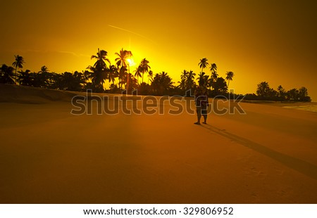 A people and tree silhouette on the beach at sunset vibrant orange - stock photo