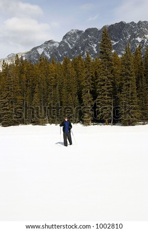 A person cross country-skiing in kanaskis country, canada. - stock photo