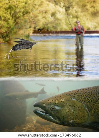 a person fly fishing with a big trout in front - stock photo