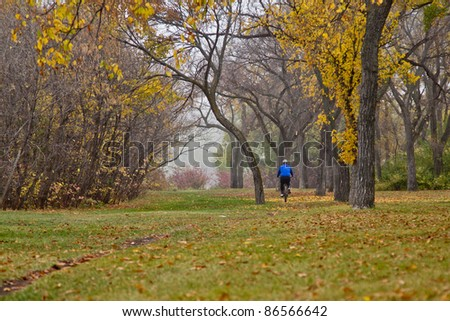 A person riding a bike in on a cold foggy day in a park in Autumn