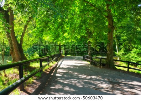 A photo a bridge in the forest in springtime