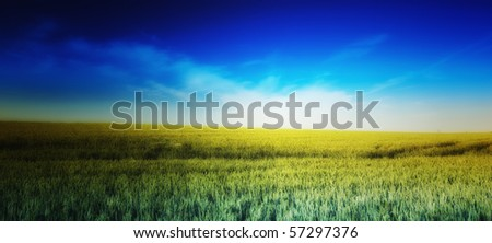 A photo of a beautiful summer sunset at the countryside - stock photo