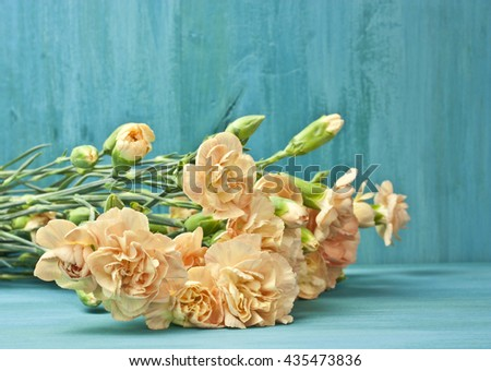A photo of a bouquet of tender carnations on vibrant turquoise blue background with copyspace; a greeting card or invitation design template - stock photo