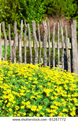A photo of a fence, flowers, blue sky and garden - stock photo