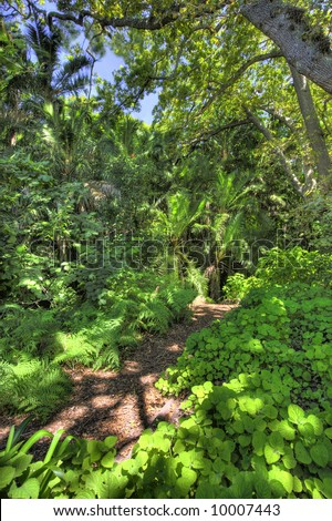 A photo of a  forest garden  in South Africa - stock photo