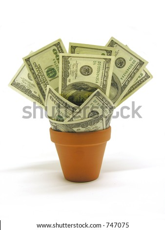A photo of money in a planter